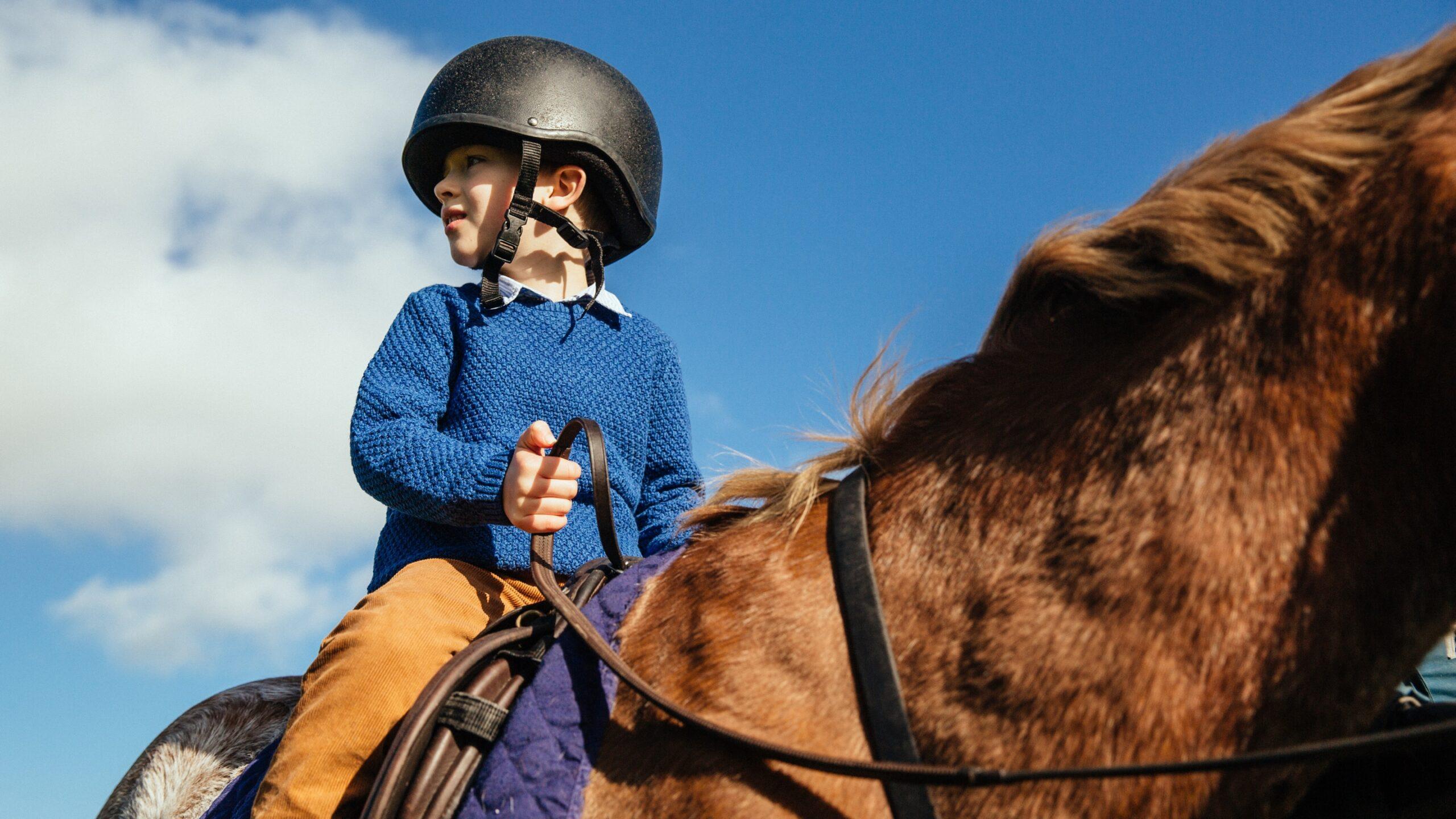 Glen_Equestrian_1